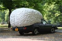 brain_wake.jpg
